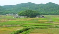 美丽的贵州乡村