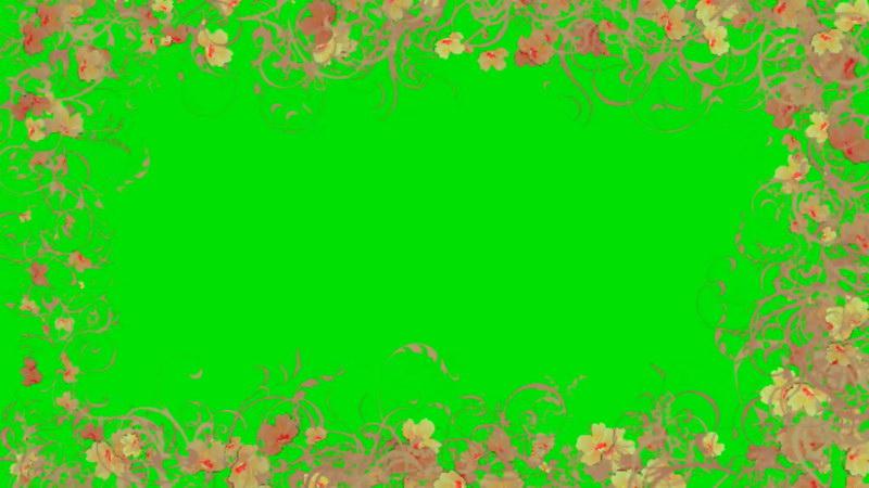 绿屏抠像花朵边框