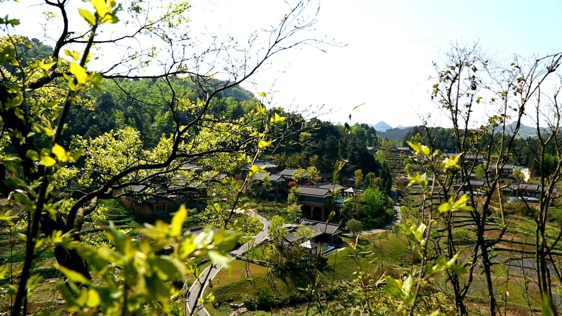 美丽乡村旅游风景