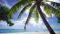 海岛边椰树旅游宣传片视频素材