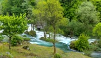 春天湍急的溪流2K视频素材