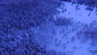 大气航拍雪海中的森林视频素材