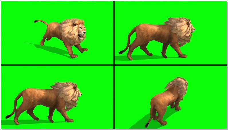 绿屏抠像雄狮