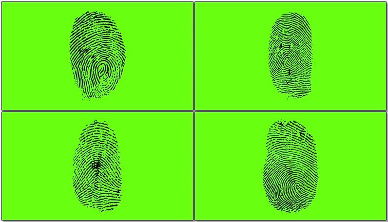 \[4K\]绿屏抠像指纹