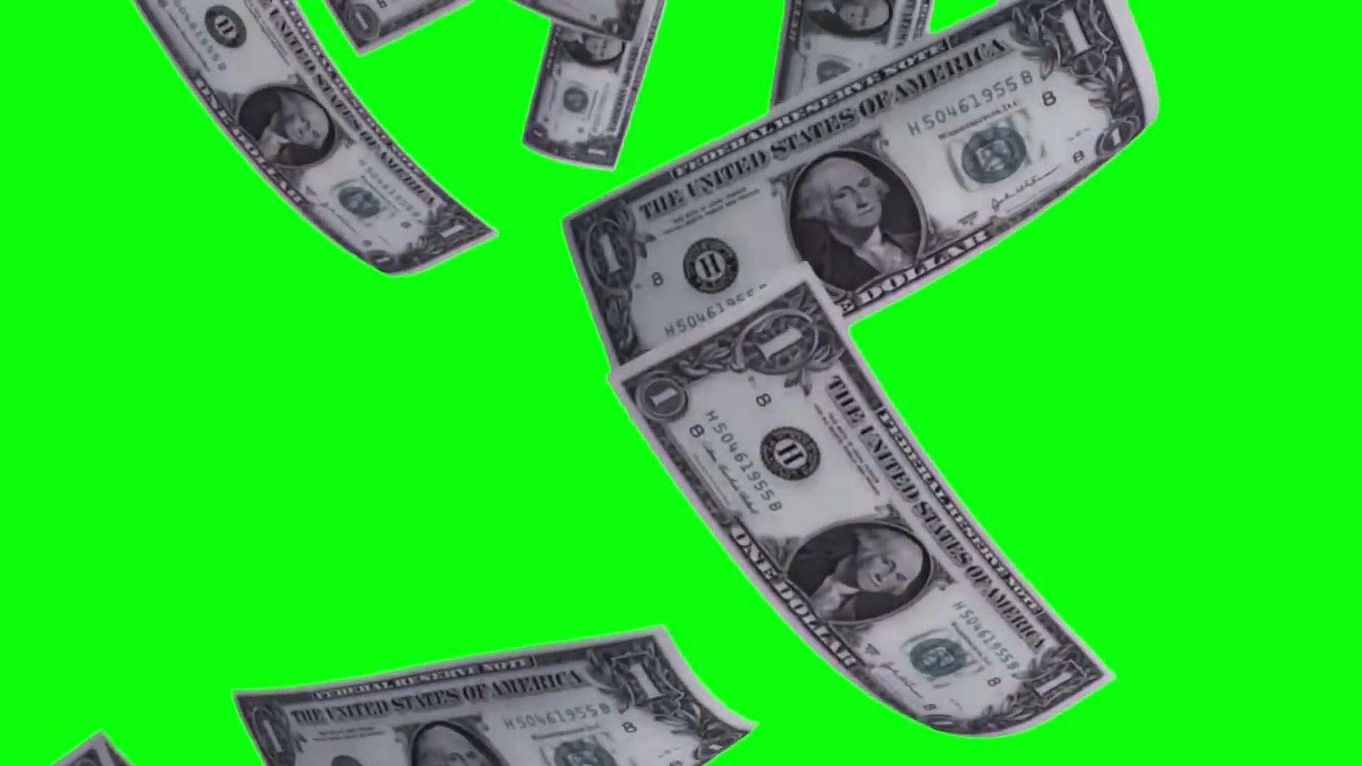 绿屏抠像飘落的美元钞票