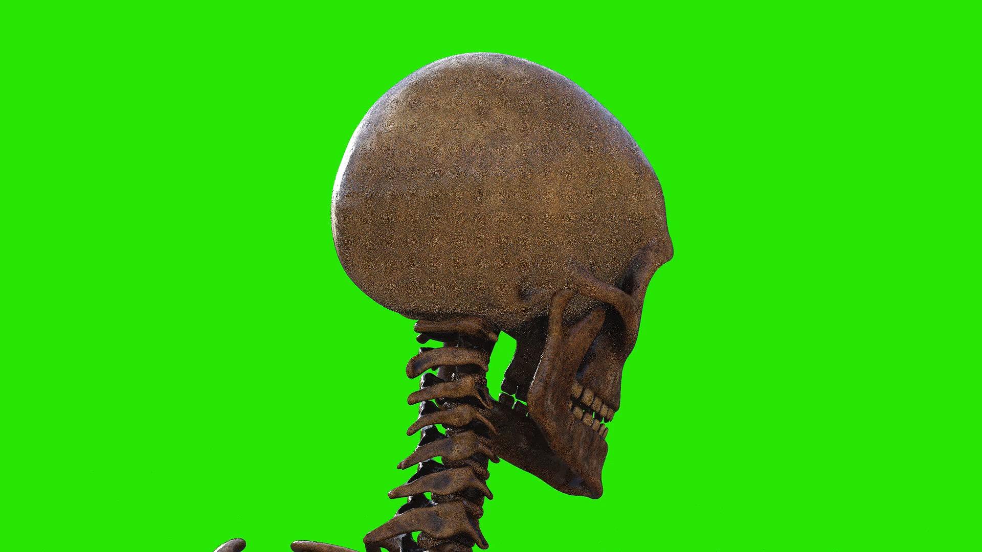 绿屏抠像人体头骨骷髅