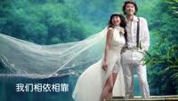 温馨时尚婚礼相册遮罩Edius模板