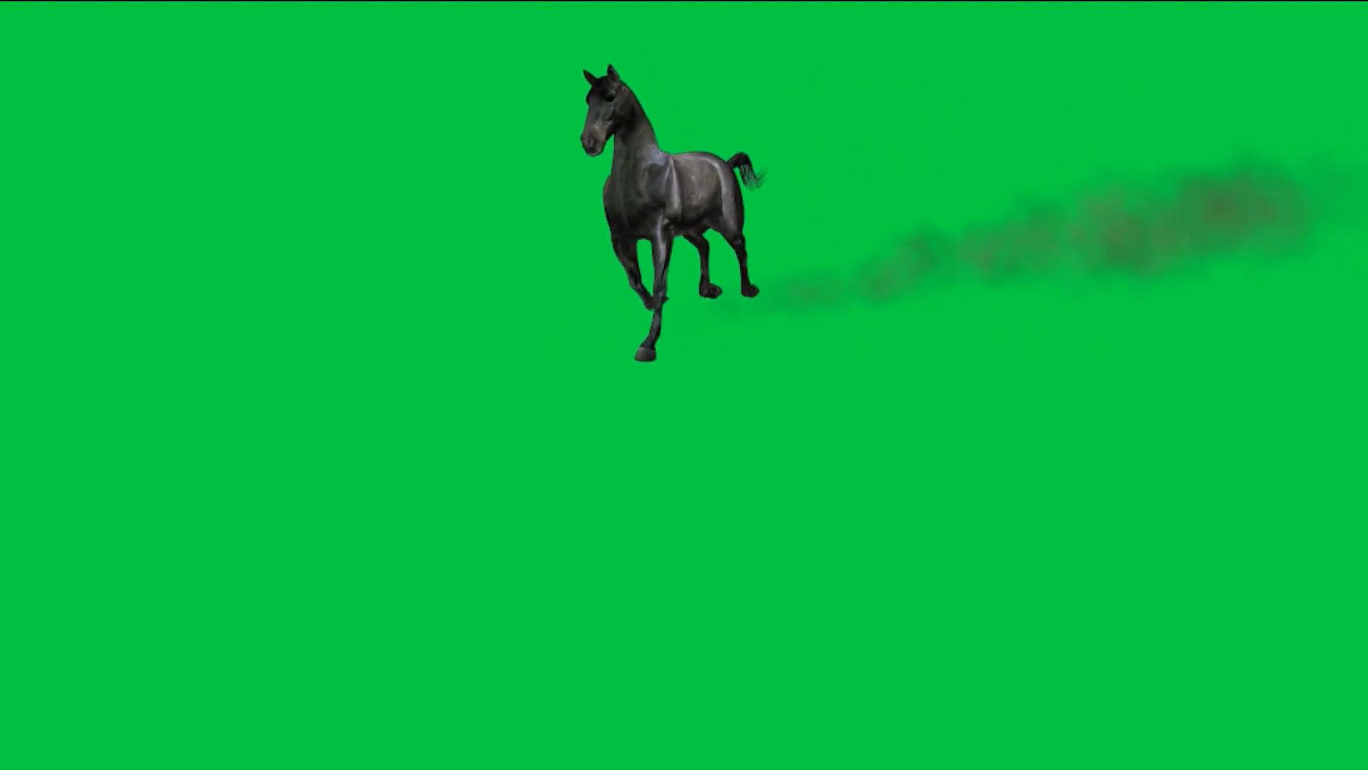 绿屏抠像奔跑的黑马