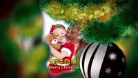 ED圣诞树相片展示