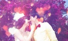 会声会影浪漫婚礼电子相册模板绯色视觉原创首发
