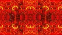 中国红流光风格正能量喜庆背景