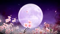 中秋月圆桃花飘飘合家欢乐梦幻视频后期特效素材