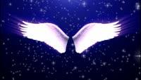 流光风格天使翅膀唯美背景