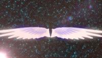 流光风格白色天使翅膀唯美背景