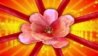 花开富贵牡丹中国结喜庆中国红流光风格晚会歌舞演出背景转场