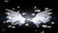 白色梦幻流光风格天使翅膀后期特效视频素材