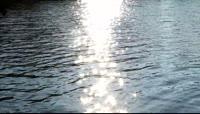 水面阳光照射自然风光美景