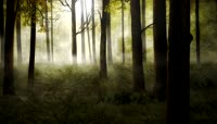 3D神秘森林背景