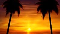 阳光海滩的黄昏实景拍摄