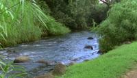 小溪水特写自然风光美景高清实拍 视频素材