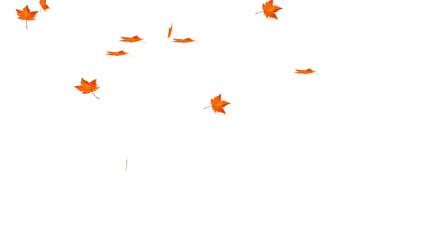 飘动的红色枫叶,白色可抠像,可循环的视频背景素材。
