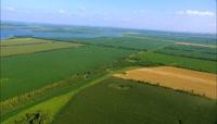 高清农作物金色小麦田园风光和揉面实拍