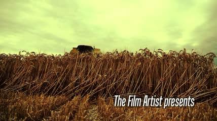 国外谷物联合收割机收割小麦