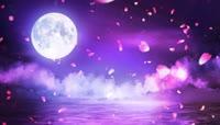 海面明月花