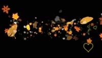 树叶与爱心掠过的高清前景装饰视频素材1_Particles