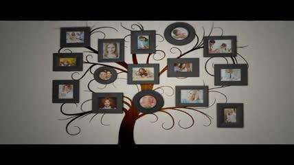 家庭树相册