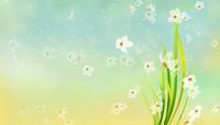 春季夏季清新背景视频