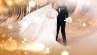 浪漫婚礼表白片头模板 folder