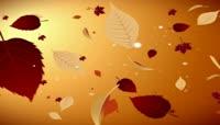 流光风格3D枫叶流动唯美背景