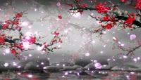 流光风格3D花瓣飘落唯美背景