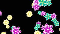 以绚丽花朵为主题的转场素材 带alpha通道 \(10\)