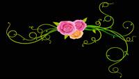 清新的花朵绽放素材 TrellisBloomss