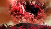 502941映山红