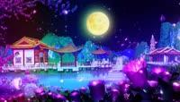 梅花月亮视频