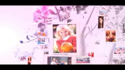 美丽梦幻的夏之树AE相册模板