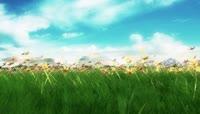 大自然天空白云花儿