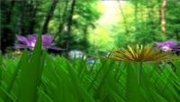 唯美森林植物鲜花素材