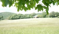 田野风光摄影