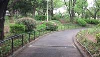 日本旅游之公园散步小路随拍
