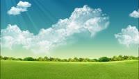 蓝天白云视屏大树生长