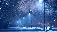 伤感下雪街景路灯唯美夜景 晚会演艺舞台LED大屏幕背景 视频素材
