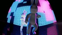 搞笑动感兔子跳舞1