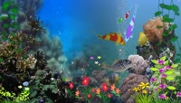 六一儿童梦幻海底世界LED背景视频素材