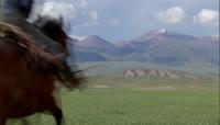 草原的高清实拍视频素材1080P