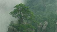 云雾缭绕视频素材