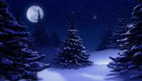 梦幻圣诞夜